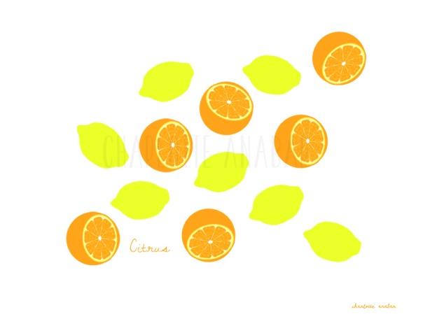 citrus_lemon_orangeFORWEB