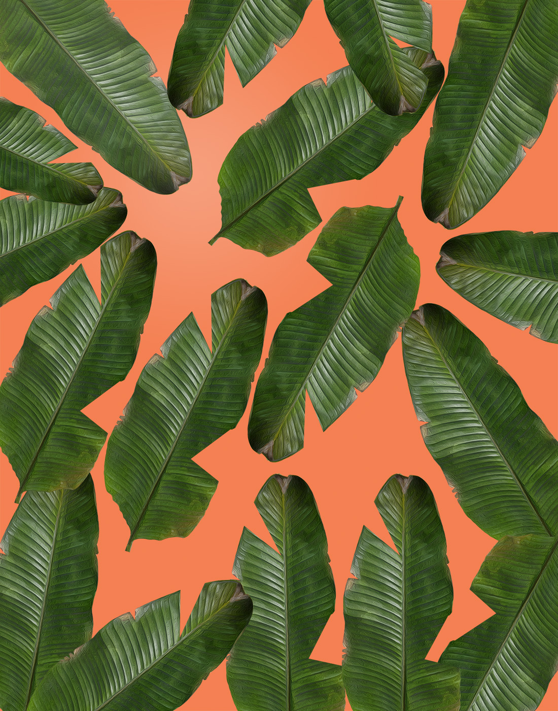 Very best banana leaf wallpaper | charlotte anabar HB16