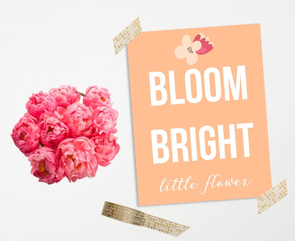 bloombright